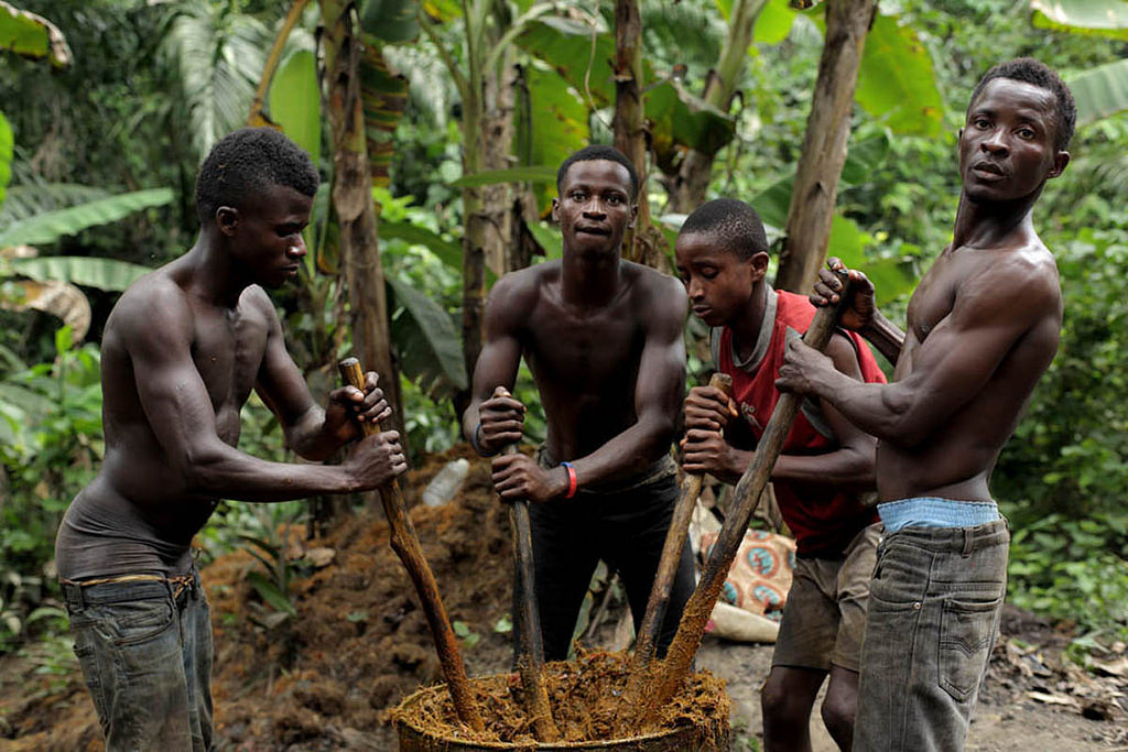 trabajadores aceite de palma