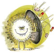 Bacterias y virus, ¿es su fama merecida?